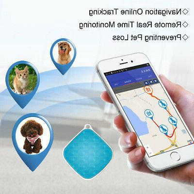 Anti-Lost Dog GPS Real Device