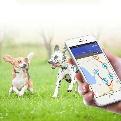 Anti-Lost Cat GPS Real Time Tracking Device
