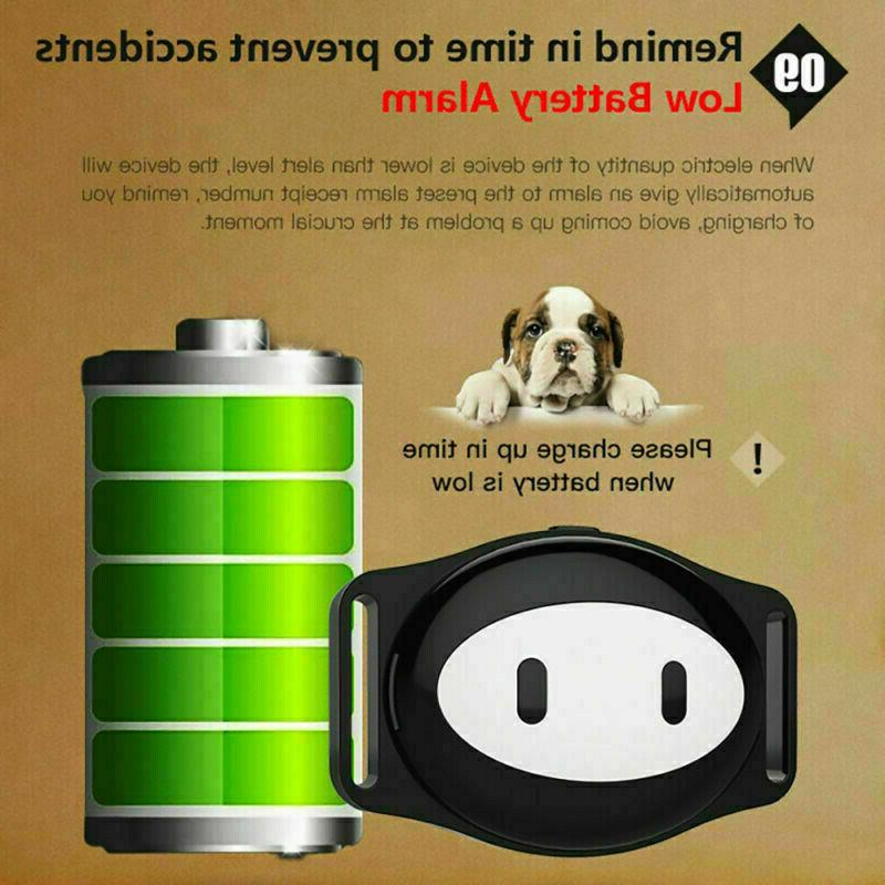 Realtime Wifi GSM Pet Collar For Dog