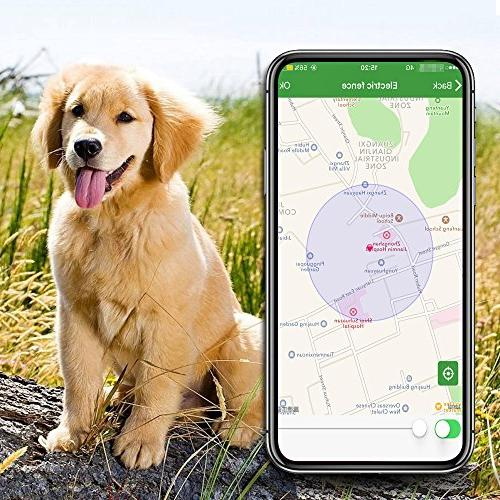 Pet Tracker, Activity Monitor for Android/iPhone Waterproof Collar Dogs and