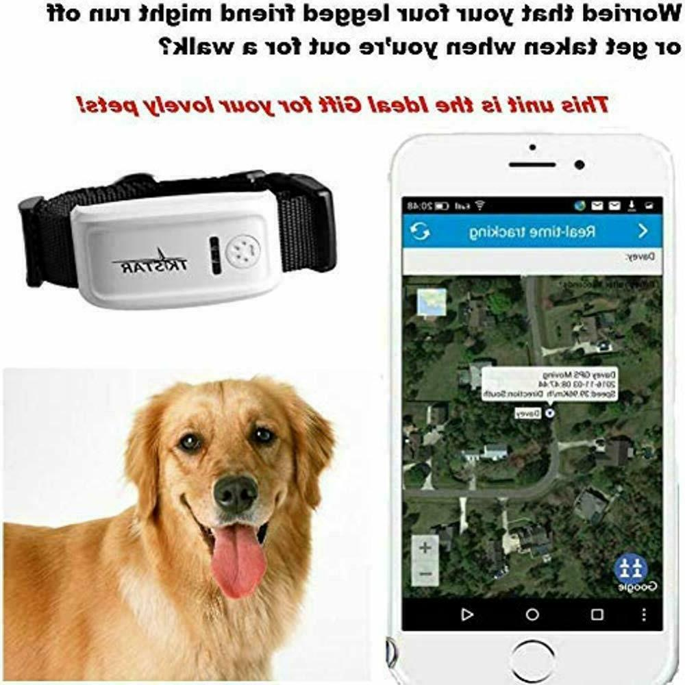 Pet GPS Dog, The 2nd Anti- Lost Collar SIM