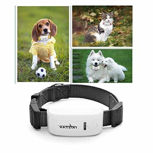 Tracker for The 2nd Generation Dog Tracker Dog Collar GPS/GSM Long Standby,Waterproof Tracking
