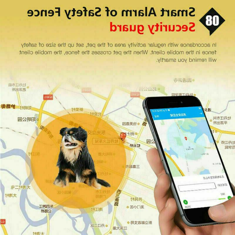 Realtime Wifi GSM Pet Collar Dog