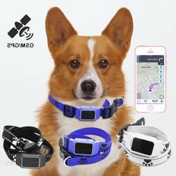 Pet GPS Tracker IP67 Real-Time Tracking Mobile Anti Lost Col
