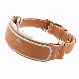 LINK AKC Smart Dog Collar - GPS Location Tracker, Activity M